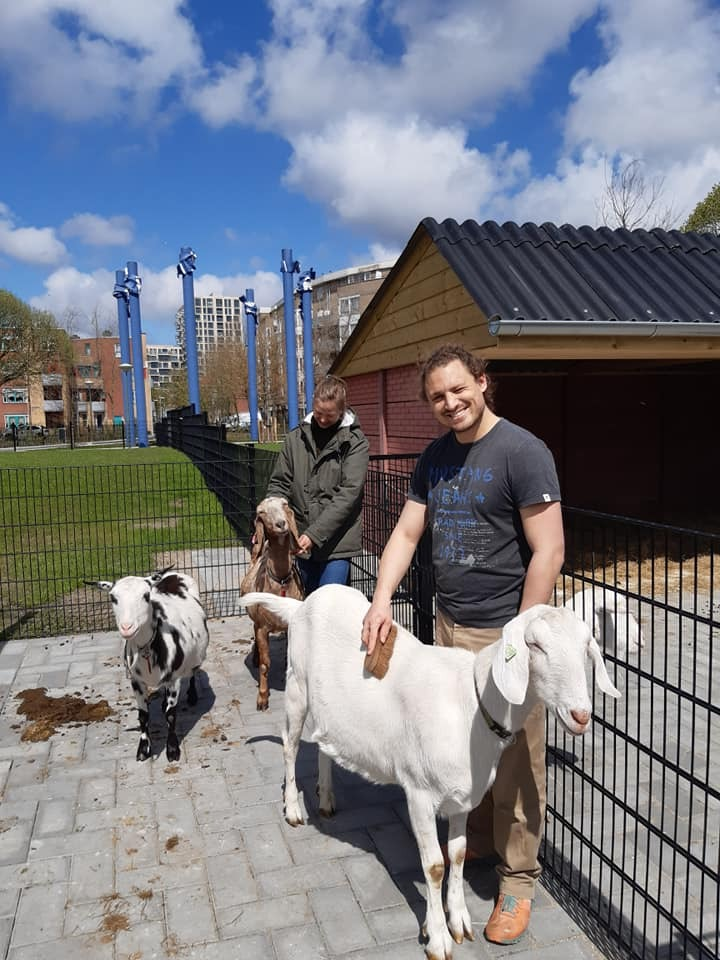 A DAY AT THE LOCAL CITY FARM